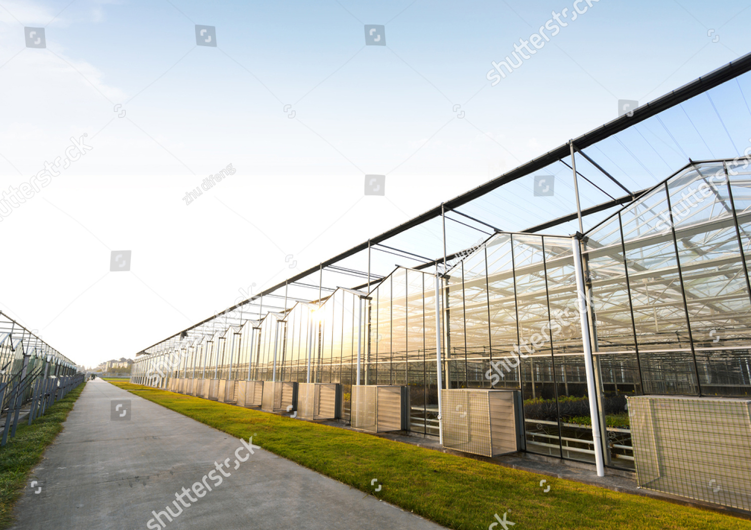 stock-photo-background-of-a-commercial-greenhouse-170583722_klein